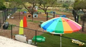 Kolohe Kids Dog Park